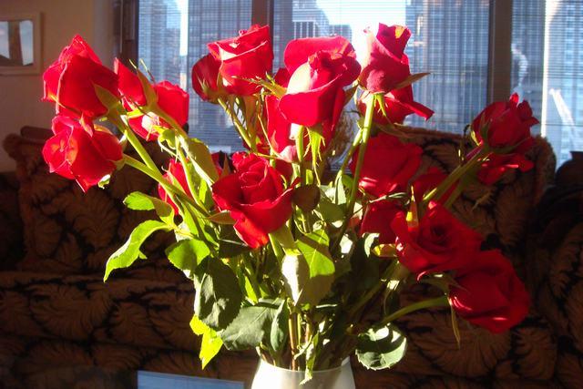 Happy Valentine\'s Day!!_d0100880_0373568.jpg