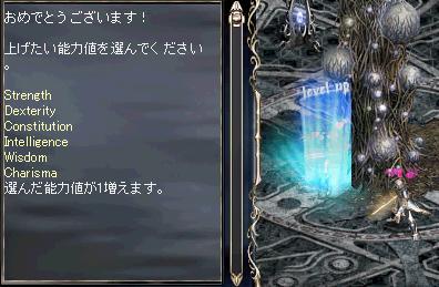 b0075192_430256.jpg