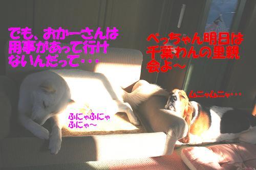 f0121712_16591770.jpg