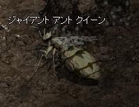 f0051047_051777.jpg