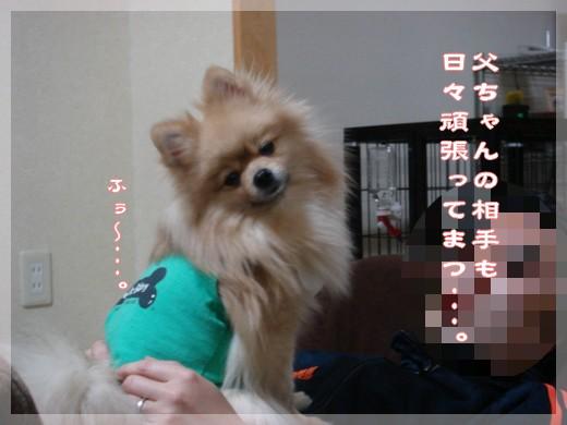 b0078073_134877.jpg