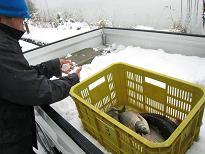 鳥取冬雑景_f0157387_10542792.jpg