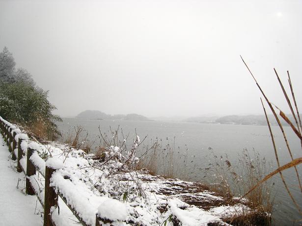 鳥取冬雑景_f0157387_1114073.jpg