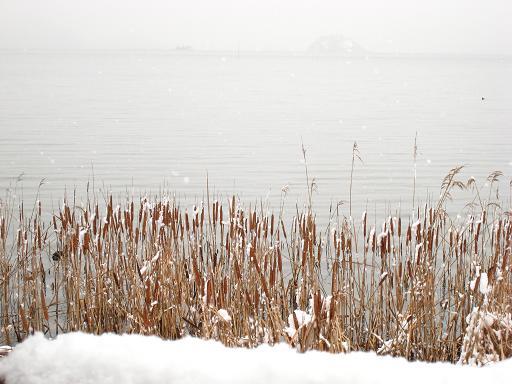 鳥取冬雑景_f0157387_11142673.jpg