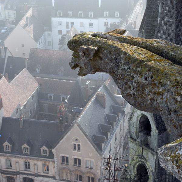 シャルトル大聖堂のガーゴイル フランス_f0117059_1940478.jpg