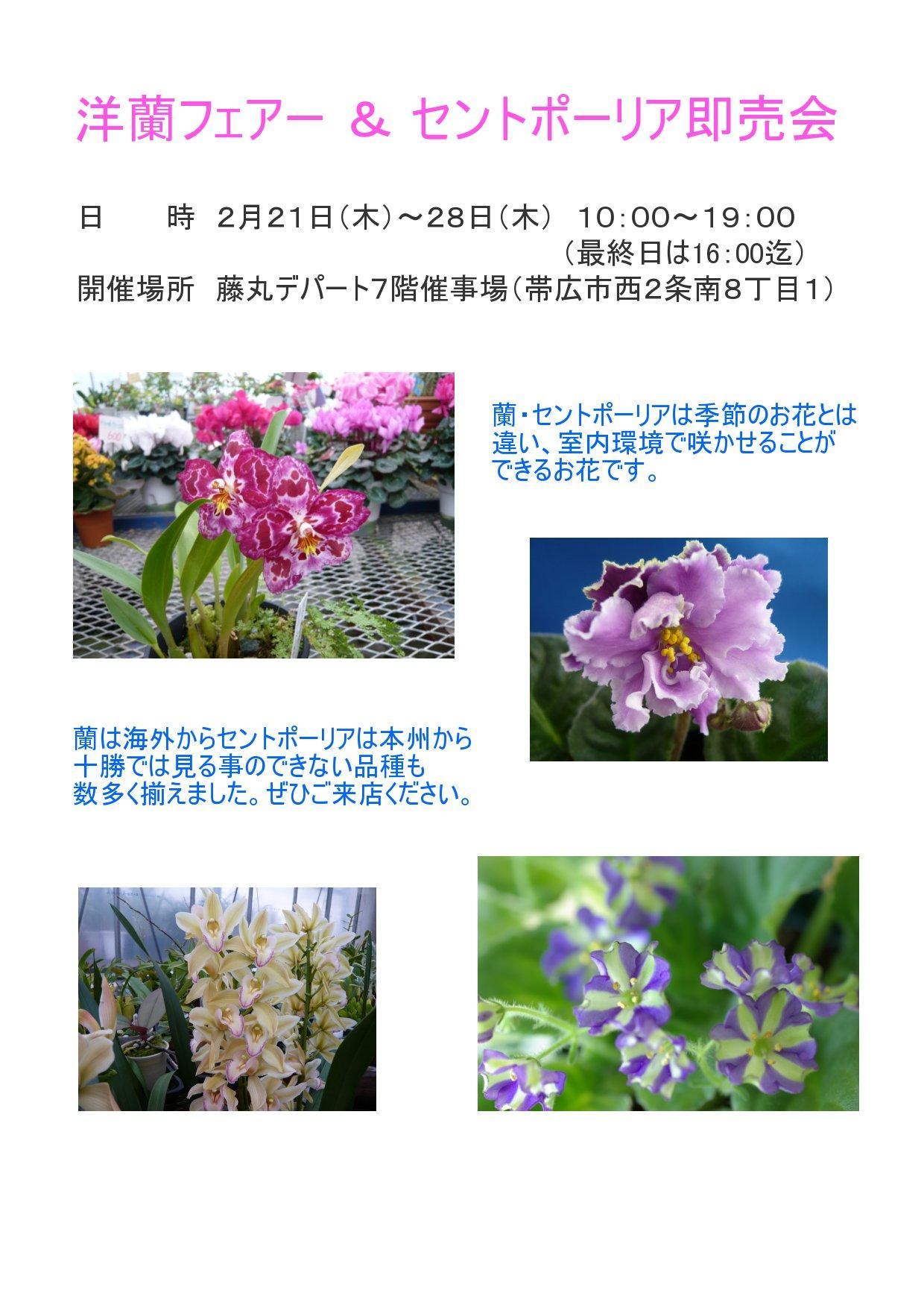 f0135269_18285256.jpg
