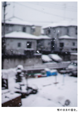 BGMは徳永さんの「雪の華」。