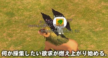c0069320_856526.jpg