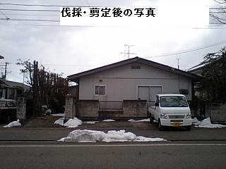 f0031037_17295847.jpg
