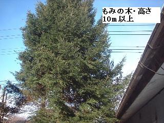 f0031037_1736461.jpg