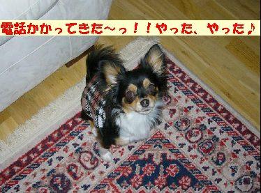 d0089861_546381.jpg