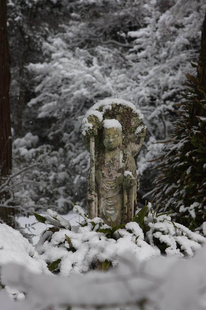 京都 雪景色 <大原> 3_f0021869_20434993.jpg