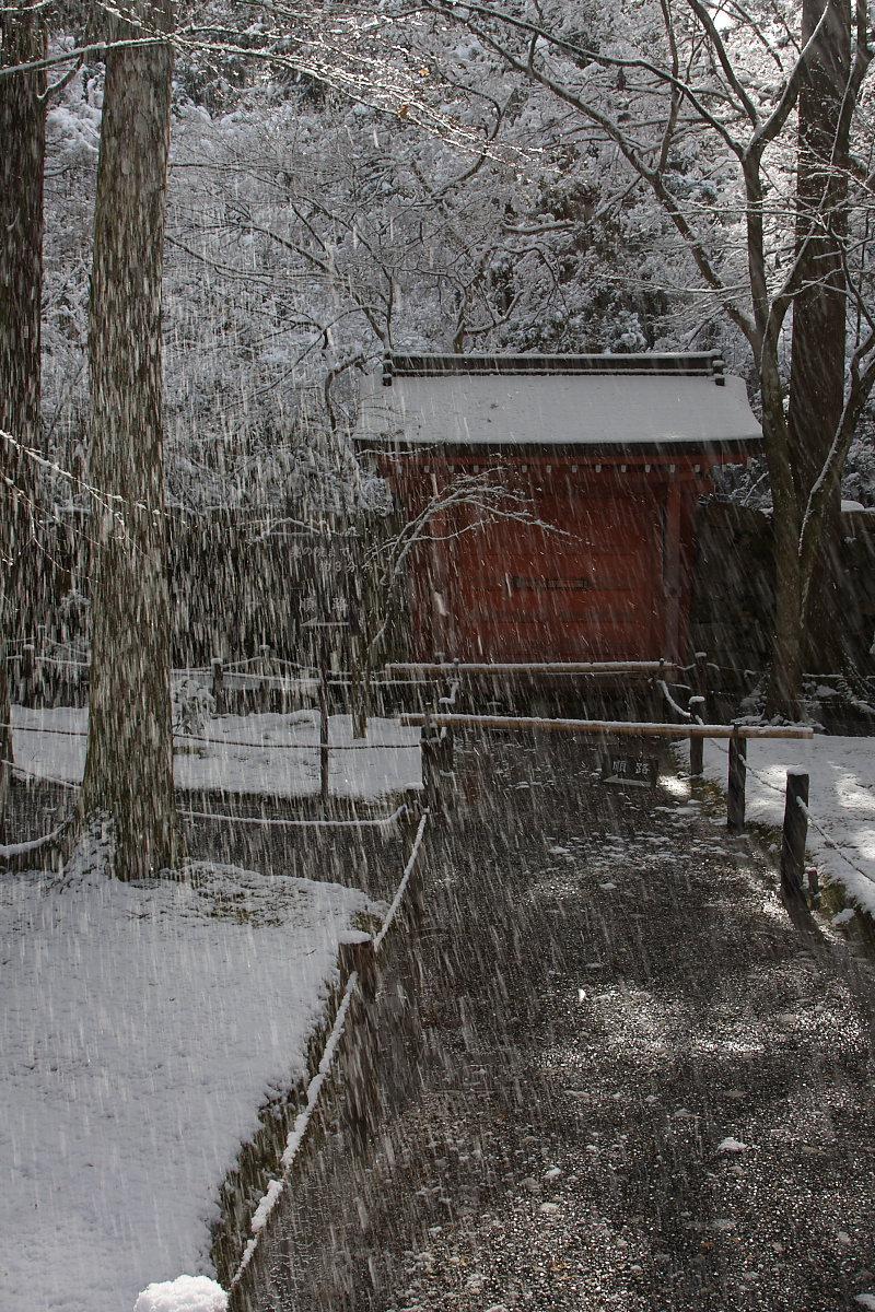 京都 雪景色 <大原> 3_f0021869_2050956.jpg