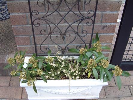 素敵なグッズにお花を飾りませんか♪_f0029571_23181872.jpg