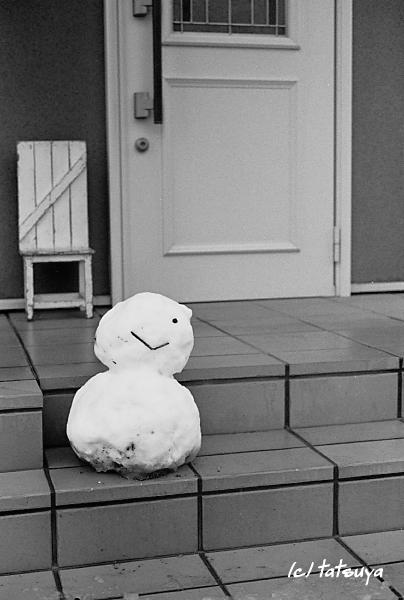 Feb  18  (mon)  雪が降る 4_f0139991_21312492.jpg