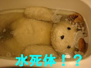 f0138304_16454523.jpg