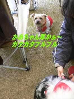 d0013645_2247032.jpg