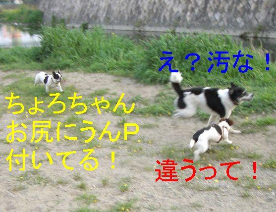 f0053952_16592212.jpg
