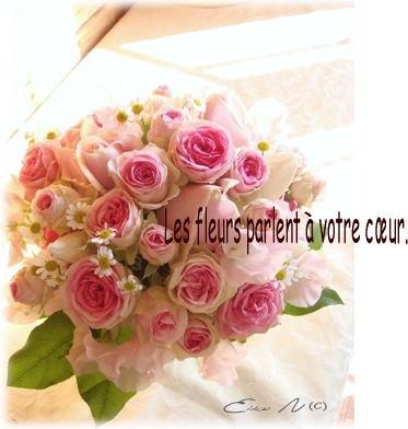 f0047764_2053589.jpg
