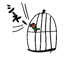 シネシネ団。_d0019498_16103052.jpg