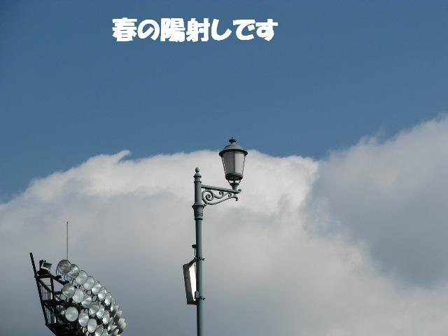 d0081210_203353100.jpg