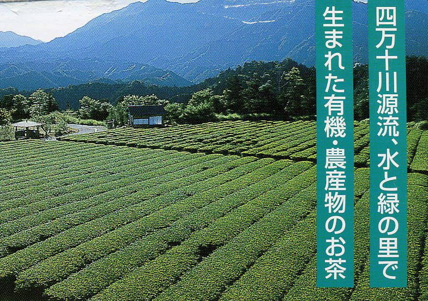 新聞記事から(高知新聞)自伐型林業「普及を応援」_a0051612_8493668.jpg