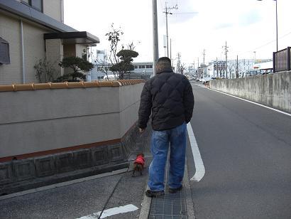散歩コース_d0070634_1625096.jpg
