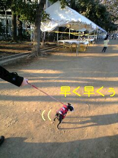 c0110945_20105118.jpg