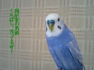 d0107965_17461830.jpg