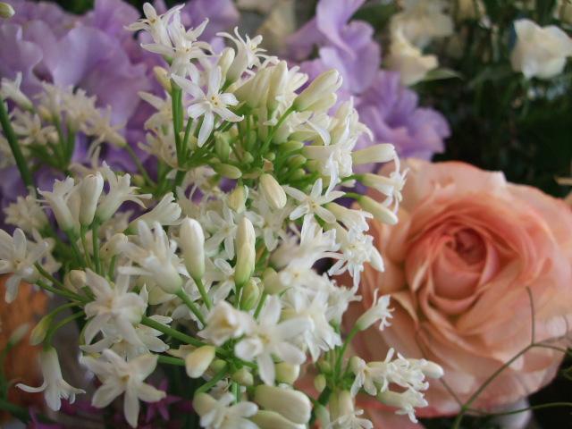 オークリーフ(小さな花)_f0049672_17491198.jpg