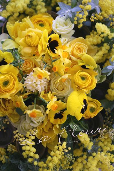 ひよこ色の花たち♪_f0127281_0332591.jpg