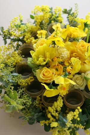 ひよこ色の花たち♪_f0127281_0431587.jpg
