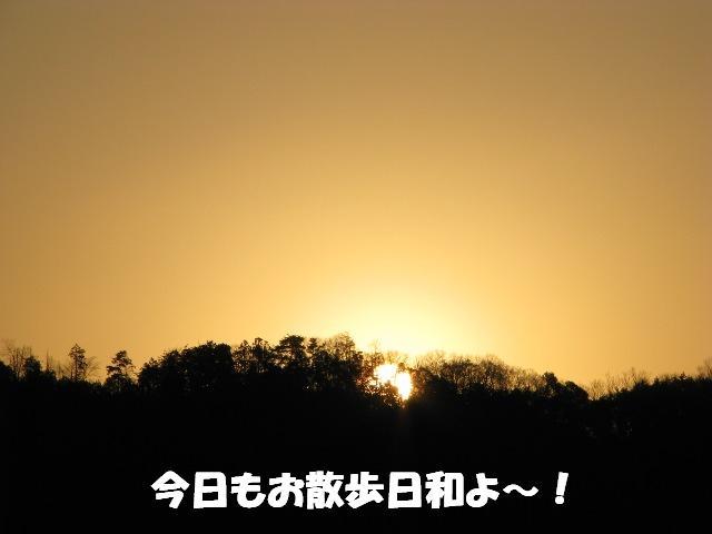 d0081210_19315235.jpg