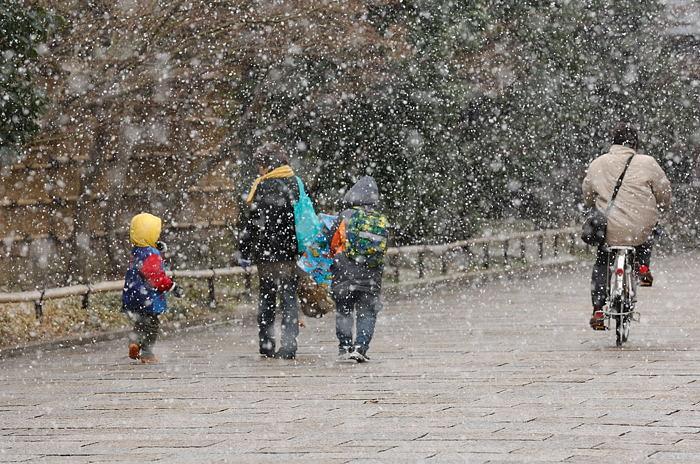 街角ニャンコ・瞬間雪国景色_f0032011_19523790.jpg