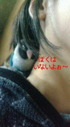 f0126418_12193522.jpg