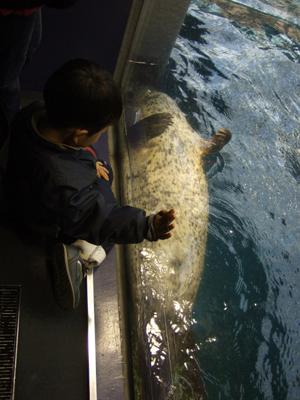 大阪港・海遊館_d0102724_2114171.jpg