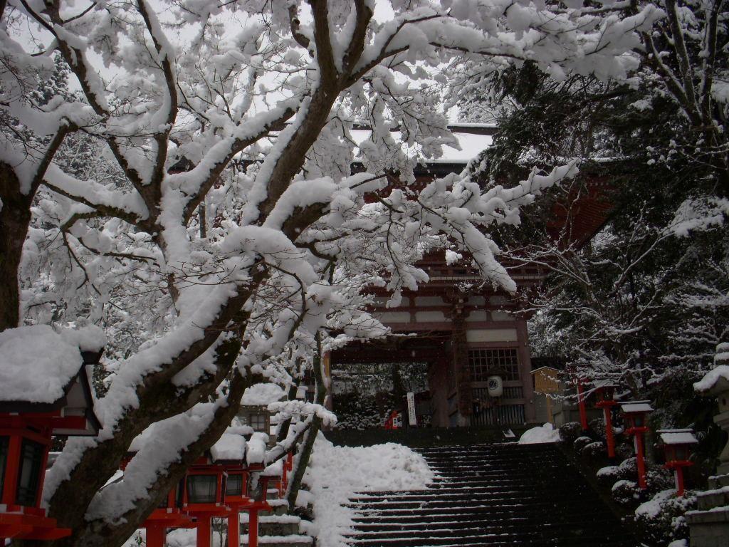 京都旅日記・・・鞍馬の訓え_c0156749_9144890.jpg