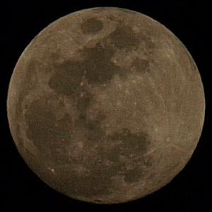 本当の月の色は・・・?_b0006870_0334998.jpg