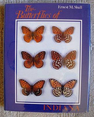 北アメリカの蝶図鑑_d0019074_13543575.jpg