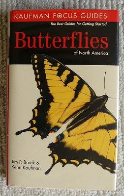 北アメリカの蝶図鑑_d0019074_13554247.jpg