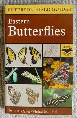 北アメリカの蝶図鑑_d0019074_1357522.jpg