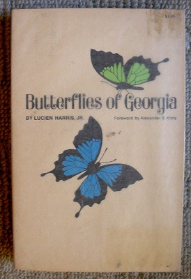 北アメリカの蝶図鑑_d0019074_13575228.jpg