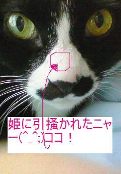 f0057094_19122897.jpg