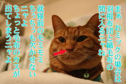 f0101903_763858.jpg