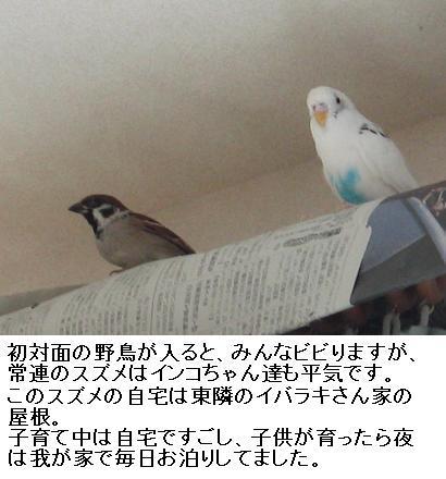 a0058941_1836189.jpg