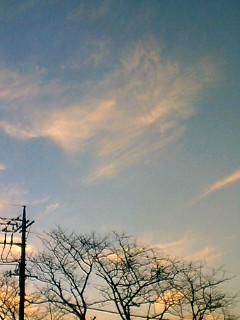 きれいな月が、、、_c0133561_113455.jpg