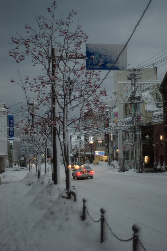 小樽の冬15 姉妹作品_f0042194_2246233.jpg