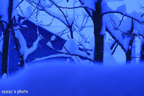 大雪警報_a0071514_17131568.jpg