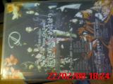 f0147462_11362440.jpg
