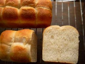 シンプル食パン生地で、丸パンとミニ食_c0110869_842019.jpg